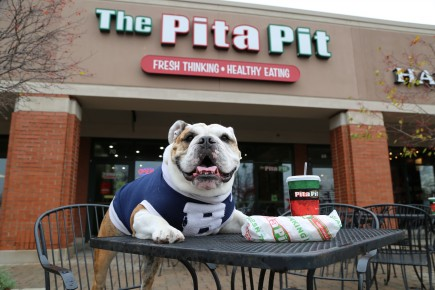 Trip at Pita Pit