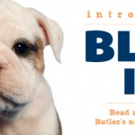 Welcome Butler Blue III, AKA Trip