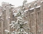Newsflash Winter